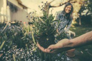 bienfais jardinage